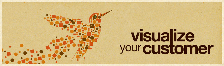 Visualize Your Customer